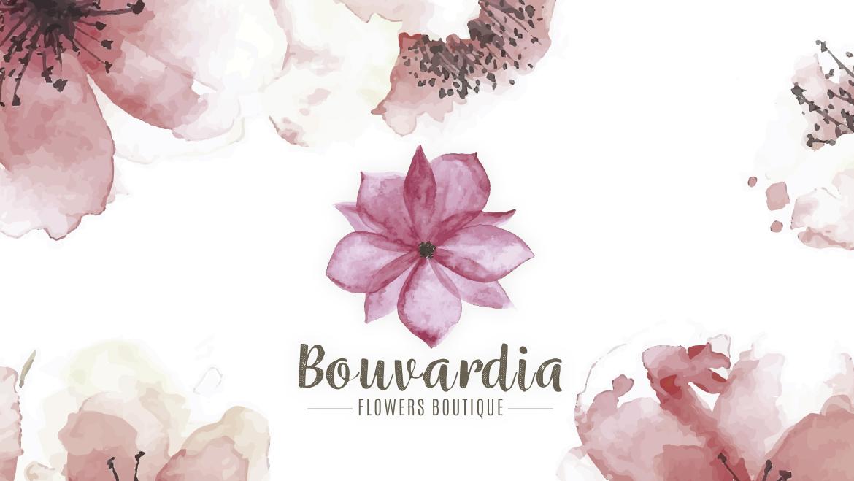 bouvardia 02